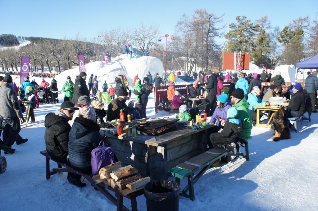 Grillning i Vinterparken